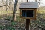 Book Nature